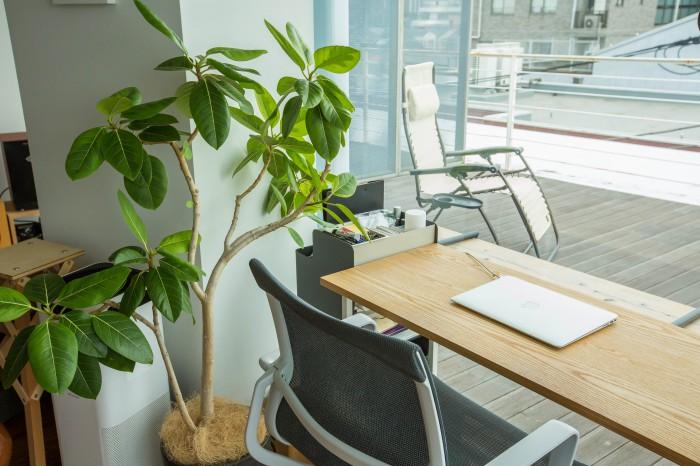 テラスを眺めながら仕事をすると、なんだか避暑地に来ているような気分にさえ。