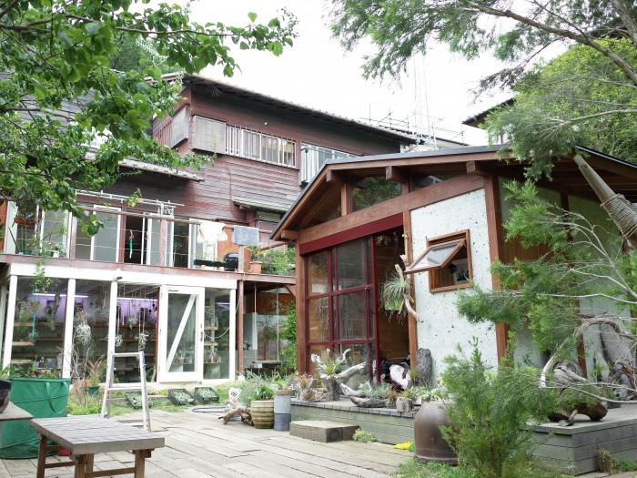 緑の木々に囲まれたお家と、植物の為の小さな小屋。この小屋は新築でした。